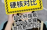 vivo&荣耀超大杯 游戏散热对比图片