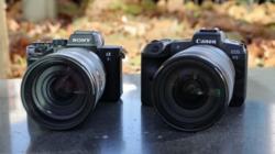 微单相机拍鸟哪家强?
