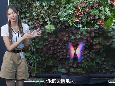 小米透明电视首发上手视频