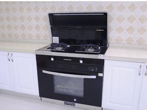 金帝A900KX体验 烹饪小白也能轻松上手