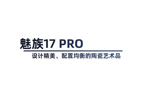 设计精美的陶瓷艺术品 魅族17 Pro