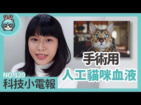 猫用手术血液研发成功:科技小电报